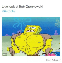 Doe, Funny, and Gif: Live look at Rob Gronkowski  Patriots  GIF  Pic Music ⠀ ⠀ ⠀ 🆕 What does Spongebob, Patrick, and the gang have to say about sports? @Spongebobsports has got you covered! 🐌 ⠀ ⠀ ⠀ ↣ @SpongeBobSports ↢ ↣ @SpongeBobSports ↢ ↣ @SpongeBobSports ↢ ↣ @SpongeBobSports ↢ ↣ @SpongeBobSports ↢ ⠀ ⠀ ⠀ They are one of my favorite accounts on Instagram! 🌴