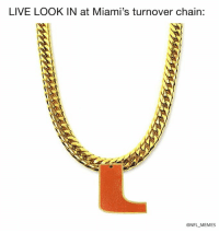 Memes, Nfl, and Live: LIVE LOOK IN at Miami's turnover chain:  @NFL MEMES
