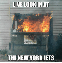 Accurate Credit: Alex Comeau: LIVE LOOKIN AT  15603-5  800-382-0204  THE NEW YORK JETS Accurate Credit: Alex Comeau