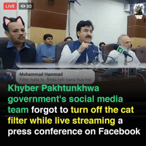 A usual day in Pakistan: LIVE O 80  aneen  Mohammad Hammad  Filter hata lo. Bnda billi bana hua hai  Khyber Pakhtunkhwa  government's social media  team forgot to turn off the cat  filter while live streaming a  press conference on Facebook A usual day in Pakistan