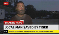 😂 The Walking Dead Memes: LIVE  TWDOM  BREAKING NEWS  LOCAL MAN SAVED BY TIGER  COMING UP: JUNKYARD WORKERS DEMAND BETTER HEALTH CONDITIONS  0:16 😂 The Walking Dead Memes