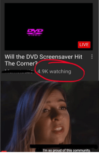 Community, Funny, and Memes: LIVE  Will the DVD Screensaver Hit  The Corner?  4.9K watching  I'm so proud of this community. 57 Very Funny Memes Of The Day To Make Your Laugh