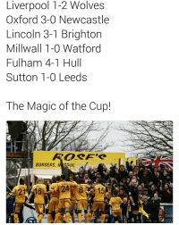 Memes, Lincoln, and Wolves: Liverpool 1-2 Wolves  Oxford 3-0 Newcastle  Lincoln 3-1 Brighton  Millwall 1-0 Watford  Fulham 4-1 Hull  Sutton 1-0 Leeds  The Magic of the Cup!  BURGERS  BIAMOUN  BAILEY  EASINON  DEACON  l: 208,569 148  ur  VCY  OUT  DOU 👐