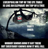 Liverpool.: LIVERPOOLON TOPOF THE EPL TABLE  IS LIKE AN ELEPHANT ON TOP OFAA TREE  FOOTY  JOKES  NOBODY KNOWS HOWIT GOT THERE  BUT EVERYBODY KNOWS HOW TWILL FALL Liverpool.