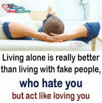 Being Alone, Fake, and Memes: Living alone is really better  than living with fake people,  who hate you  but act like loving you