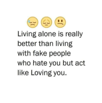 fake people: Living alone is really  better than living  with fake people  who hate you but act  like Loving you