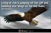 Memes, Wings, and Jumped: Living at risk is jumping off the cliff and  building your wings on the way down  Ray Bradbury  Brainy  Quote Living at risk is jumping off the cliff and building your wings on the way down. - Ray Bradbury  https://www.brainyquote.com/quotes/quotes/r/raybradbur102288.html #brainyquote #QOTD #wings #risk