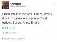 Memes, Supreme Court, and 🤖: Living Blue  @Living BlueinRed  A man that is in the WWE Hall of Fame is  about to nominate a Supreme Court  justice... But youknow. Emails.  #SCOTUS  1/31/17, 6:48 PM  Ili VIEW TWEET ACTIVITY Seriously?!?