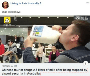 Tourist: Living in Asia Ironically 3  Imao chad move  ge  SHANGHALIST  Chinese tourist chugs 2.5 liters of milk after being stopped by  airport security in Australia