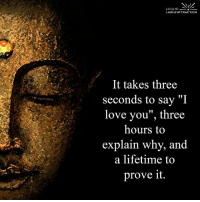 """Memes, I Love You, and Lifetime: Living the  LAW of ATTRACTION  It takes three  seconds to say  """"I  love you"""", three  hours to  explain why, and  a lifetime to  prove it. <3"""