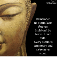 We are never alone...: Living the  LAW of ATTRACTION  Remember,  no storm lasts  forever.  Hold on! Be  brave! Have  faith!  Every storm is  temporary and  We're never  alone We are never alone...