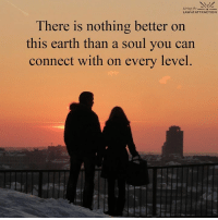 Love is everything...: Living the  LAW of ATTRACTION  There is nothing better on  this earth than a soul you can  connect with on every level Love is everything...