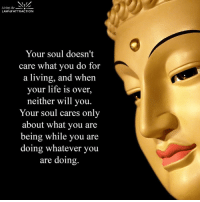 Be love...: Living the  LAW of ATTRACTION  Your soul doesn't  care what you do for  a living, and when  your life is over,  neither will you.  Your soul cares only  about what you are  being while you are  doing whatever you  are doing. Be love...