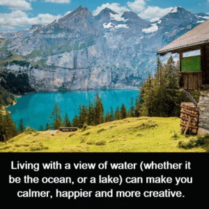 Memes, Ocean, and Water: Living with a view of water (whether it  be the ocean, or a lake) can make you  calmer, happier and more creative.