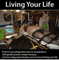 Bunnies, Crying, and Easter: Living Your Life  edicin  If you're not getting taken away in an ambulance  with sparkle panties, oompa loompas,  and two crying easter bunnies, you're just not living your life <p>Si en nochevieja no te han llevado en ambulancia, mientras llevabas medias de rejilla y te acompañaban oompa loompas y dos conejos llorando&hellip; No has tenido nochevieja</p>