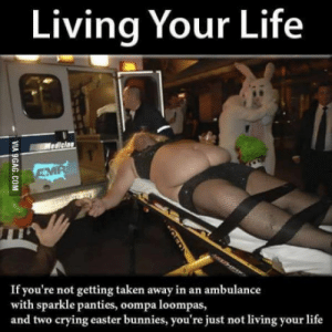 Bunnies, Crying, and Easter: Living Your Life  ediclan  If you're not getting taken away in an ambulance  with sparkle panties, oompa loompas,  and two crying easter bunnies, you're just not living your life How to live your life