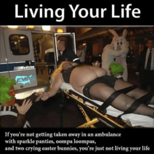 Bunnies, Crying, and Easter: Living Your Life  If you're not getting taken away in an ambulance  with sparkle panties, oompa loompas,  and two crying easter bunnies, you're just not living your life Maybe I should get out more !?!