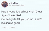 """Memes, Good, and 🤖: LivingBlue  @LivingBlueinRed  Has anyone figured out what """"Great  Again looks like?  Cause I gotta tell you, so far... it ain't  looking so good  7/3/17, 11:15 PM Not feeling it Donny."""