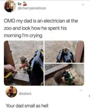 Just 2 more days of work: liz  @cherryemoticon  OMG my dad is an electrician at the  zoo and look how he spent his  morning l'm crying  @tallant  Your dad small as hell Just 2 more days of work