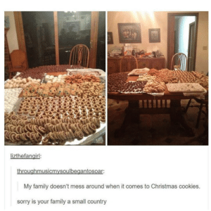 Christmas, Cookies, and Family: lizthefanairl:  throughmusicmvsoulbegantosoar  My family doesn't mess around when it comes to Christmas cookies.  sorry is your family a small country Sweet