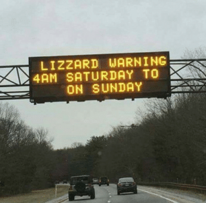 memehumor:  The reptilian overlords are finally coming to take over the east coast: LIZZARD WARNING  4AM SATURDAY TO  ON SUNDAY memehumor:  The reptilian overlords are finally coming to take over the east coast