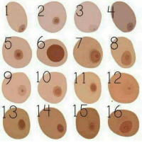 Of nipples types different Types Of