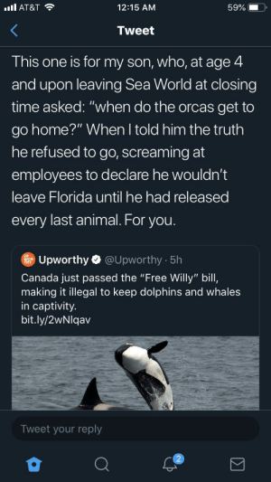 """RELEASE THE ORCAS: ll AT&T  12:15 AM  59%  Tweet  This one is for my son, who, at age 4  and upon leaving Sea World at closing  time asked: """"when do the orcas get to  go home?"""" When I told him the truth  he refused to go, screaming at  employees to declare he wouldn't  leave Florida until he had released  every last animal. For you.  @Upworthy 5h  Upworthy  Canada just passed the """"Free Willy"""" bill,  making it illegal to keep dolphins and whales  in captivity.  bit.ly/2wNlqav  Tweet your reply  2 RELEASE THE ORCAS"""
