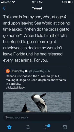 """of course he said that: ll AT&T  12:15 AM  59%  Tweet  This one is for my son, who, at age 4  and upon leaving Sea World at closing  time asked: """"when do the orcas get to  go home?"""" When I told him the truth  he refused to go, screaming at  employees to declare he wouldn't  leave Florida until he had released  every last animal. For you.  @Upworthy 5h  Upworthy  Canada just passed the """"Free Willy"""" bill,  making it illegal to keep dolphins and whales  in captivity.  bit.ly/2wNlqav  Tweet your reply  2 of course he said that"""
