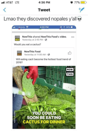 They've discovered our secret: ll AT&T LTE  4:36 PM  77%  Tweet  Lmao they discovered nopales y'all  '11, T-Mobile  令  4:06 PM  OW NowThis shared NowThis Food's video.  THIS Yesterday at 2:45 PM.  Would you eat a cactus?  NOW NowThis Food  FOD Yesterday at 11:00 AM.  Will eating cacti become the hottest food trend of  2018?  NOW  THIS  YOU COULD  SOON BE EATING  CACTUS FOR DINNER They've discovered our secret