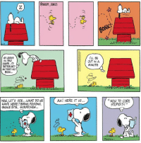 "SAVAGE snoopy comics cartoon snoopycomics woodstock howtocurestupidity: LL BE  HE LOOKS  IN BAD  OUT IN A  MINUTE  BETTER GET  NH FIRST AID  BOOK...  NOW, LET's SEE ...WHAT DO WE  AHI HERE IT IS...  HAVE HERE BURNS, POISONS,  SNAKE BITE, SCRATCHES...  HOW TO CURE  STUPIDITY"" SAVAGE snoopy comics cartoon snoopycomics woodstock howtocurestupidity"