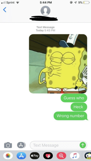 Gif, Guess, and Sprint: ll Sprint ?  5:44 PM  Text Message  Today 5:43 PM  Guess who  Heck  Wrong number  Text Message I meant to send a gif to my friend's sister and messed up by one number