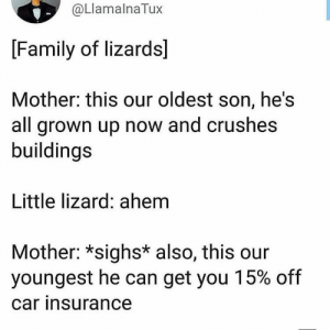 Family, Car, and Mother: @LlamalnaTux  [Family of lizards]  Mother: this our oldest son, he's  all grown up now and crushes  buildings  Little lizard: ahem  Mother: *sighs* also, this our  youngest he can get you 15% off  car insurance @propertyritesmemes should post this oohwoo -m