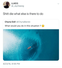 Blackpeopletwitter, Game, and Chyna: LLKO3  @_JayDaawg  Shitt die what else is there to do  Chyna Doll @ChynaBandz  What would you do in this situation  8/23/18, 9:56 PM Its literally Game Over (via /r/BlackPeopleTwitter)