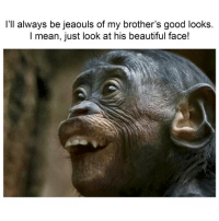 Beautiful, Latinos, and Memes: l'll always be jeaouls of my brother's good looks.  I mean, just look at his beautiful face! Tag that handsome brother!! 😂 Follow Us➡️ @nochill_latinos