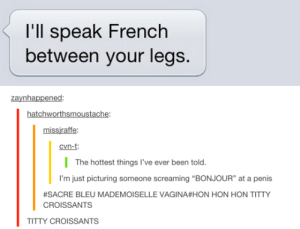 """Frenchomg-humor.tumblr.com: l'll speak French  between your legs.  zaynhappened:  hatchworthsmoustache:  missjraffe:  cvn-t:  