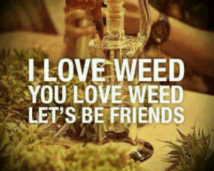 Great Conversation Starter: LLOVE WEED  YOU LOVE WEED  LET'S BE FRIENDS Great Conversation Starter