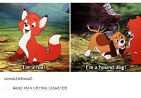hound dogs: l'm a fox  I'm. a hound dog!  ruinedchildhood2:  #AND I'M A CRYING DISASTER