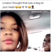 Memes, Gotti, and Thought: Lm  aoo l thought that was a dog on  @Maserati_Gotti Why that face tho 💀💀😂