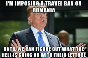 Came across this gem today. Sorry if its already been posted via /r/funny https://ift.tt/2PdDyRs: l'M IMPOSING A-TRAVEL BAN ON  ROMANIA  UNTIL WE CAN FIGURE OUT WHAT THE  HELL ISGOING ON WITH THEIR LETTUE Came across this gem today. Sorry if its already been posted via /r/funny https://ift.tt/2PdDyRs