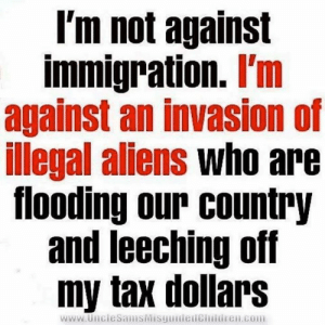 Memes, Aliens, and Immigration: l'm not against  immigration. I'm  against an invasion of  illegal aliens who are  flooding our country  and leeching off  my tax dollars  www.UncieSamisMisguitieticmldren.com