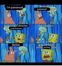 SpongeBob: l'm pansexual  What does  pansexual mean?  It means he's attracted  to kitchenware  No. it doesn't.  Skillet.  Stop it, Patrick  youre exciting him!  SPONGEBOB DAILY