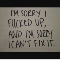 Sorry: l'M SORRY  FUCKED UP  AND I'M SORRY  CAN'T FIX IT