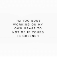 Working, Grass, and Own: l'M TOO BUSY  WORKING ON MY  OWN GRASS TO  NOTICE IF YOURS  IS GREENER