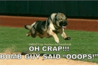 "LMAO Cop Humor on Facebook  OH CRAP  BOMB GUY SAID ""OOOPS!"" Run!!!"