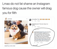 "Ass, Bitch, and Corgi: Lmao do not fat shame an Instagram  famous dog cause the owner will drag  you for filth  pcacorgis  circumflex Thicco  2d 1like Reply  stephonie_erin That poor dog is so  obese.  d 1 like Reply  de replies  pcacorgis @stephonie erin Actually  bitch, the healthy weight for an  adult male Corgi is 25-30 lbs and  he weighs 26. Go troll on someone  else's page and find something  better to do than hate on a precious  dog that looks better than you ever  will.@moffittier @brambi76 look at  this bitch calling Pax ""so obese.""  8h 7 likes Reply  3/6/18, 8:43 AM Yeah that's right Stephanie, sit your ass down and learn some manners 👋🏼 bitchbye"