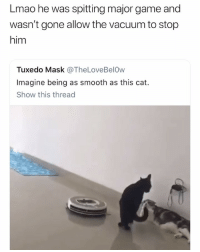 smooth asf 👀 👉🏽(via: _mikemillion-Twitter): Lmao he was spitting major game and  wasn't gone allow the vacuum to stop  him  Tuxedo Mask @TheLoveBelOw  Imagine being as smooth as this cat.  Show this thread smooth asf 👀 👉🏽(via: _mikemillion-Twitter)