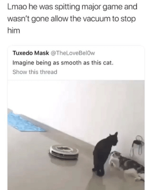 Dm to ANYONE this smooth 😉: Lmao he was spitting major game and  wasn't gone allow the vacuum to stop  him  Tuxedo Mask @TheLoveBelOw  Imagine being as smooth as this cat.  Show this thread Dm to ANYONE this smooth 😉