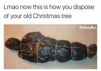 Hate your neighbor? Do this- they will for sure have a heart attack lol (@thehornynun): Lmao now this is how you dispose  of your old Christmas tree  TheHornyNun Hate your neighbor? Do this- they will for sure have a heart attack lol (@thehornynun)