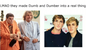 Dumb, Lmao, and Memes: LMAO they made Dumb and Dumber into a real thing  PS  JoR  Jor  ESS  NESSE  AESs Loooollllll via /r/memes https://ift.tt/2DI4tTB