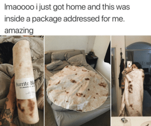 Anaconda, Home, and Amazing: lmaoooo ust got home and this was  inside a package addressed for me  amazing  Burrito Bla  100% MICROFIE R.60.  20 Delicious Blanket